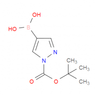 1-tert-Butoxycarbonyl-1H-pyrazole-4-boronic acid