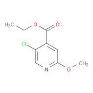 Ethyl 5-chloro-2-methoxypyridine-4-carboxylate