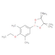 3,5-Dimethyl-4-ethoxyphenylboronic acid pinacol ester